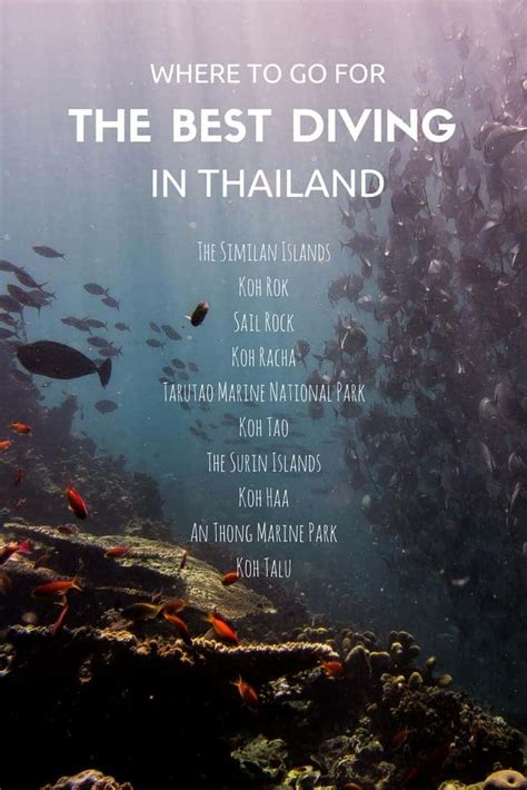 best dive the best diving in thailand wos