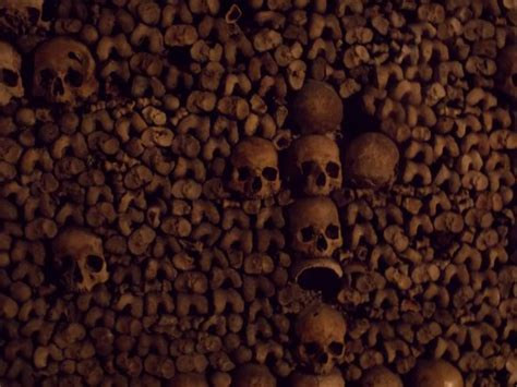 Comptoir Des Catacombes by Catacombes De Picture Of Comptoir Des Catacombes