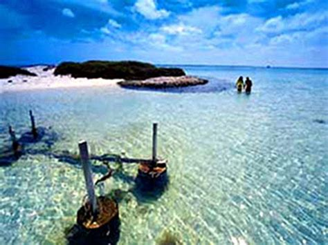 cruises visiting abrolhos islands | 2018 2019 abrolhos