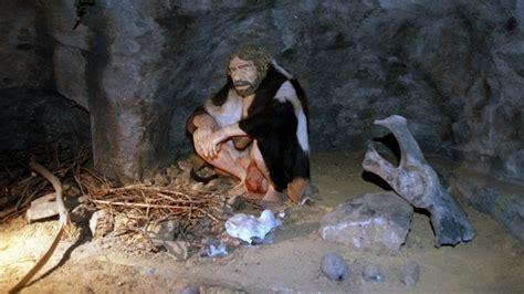 feuerstellen steinzeit neandertaler wie lebte der neandertaler urzeit