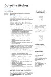 product development manager resume sles visualcv