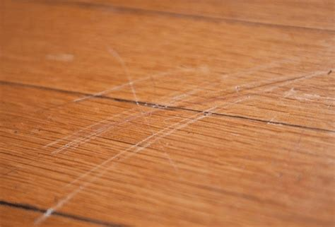 scratched hardwood floors from dogs 10 useful tips for cleaning hardwood floors theflooringlady