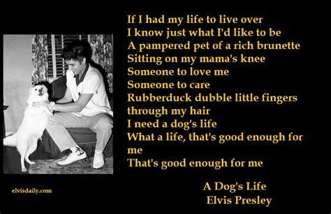i just your puppy lyrics 7 elvis lyrics with photos 1 elvis