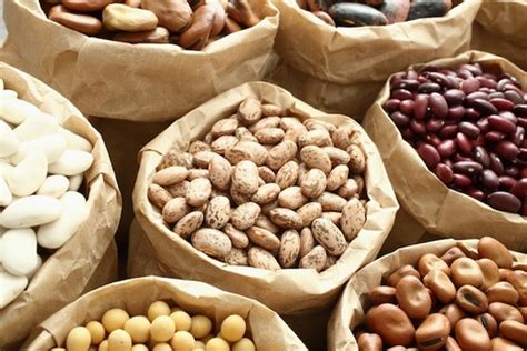 alimenti contengono cereali legumi elenco propriet 224 valori nutrizionali cure