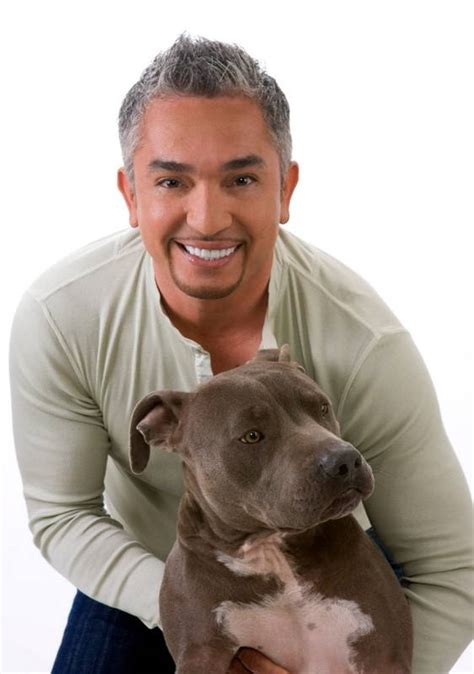 cesar millan s lessons from the pack stories of the dogs who changed my books author events meet whisperer cesar millan in