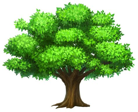 pictures of trees tree clipart free clipart images 2 cliparting