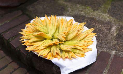 fiori di zucchina ricette fiori di zucca 10 ricette golose e facilissime leitv
