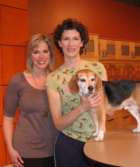 vancouver animal massage pet massage throughout the vancouver animal massage pet massage throughout the