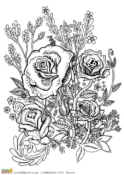 printable rose coloring pages for adults four free flower coloring pages for adults flower