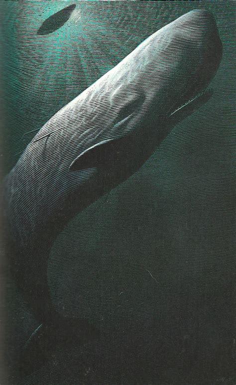 animalarium white whale