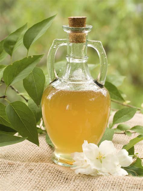 rooting plants  vinegar    apple cider