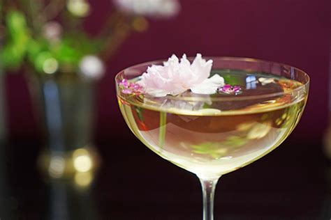 apple martini with cherry gastronomista luxardo cherry blossom martini