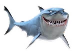 gallery gt finding nemo shark clipart