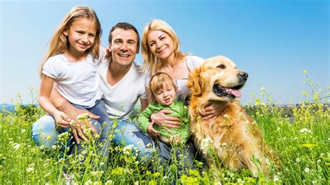 family photos with dogs best dogs for and families me and my child