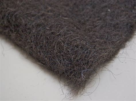 Matted Up by Donate Your And Cat Hair To Clean Up The Spill