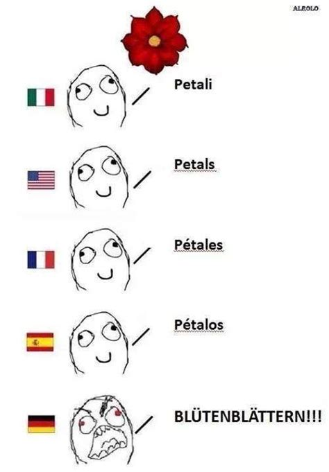 German Butterfly Meme - petal in various languages funny pictures quotes memes