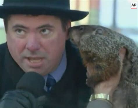 groundhog day jimmy dlisted of the day