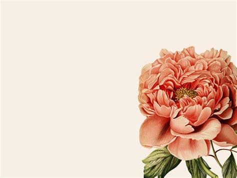 botanical wallpaper botanical desktop wallpaper pearly gates design