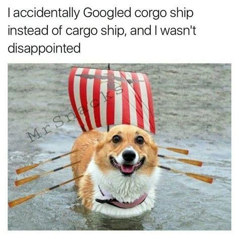 fun l memebase corgi all your memes are belong to us funny