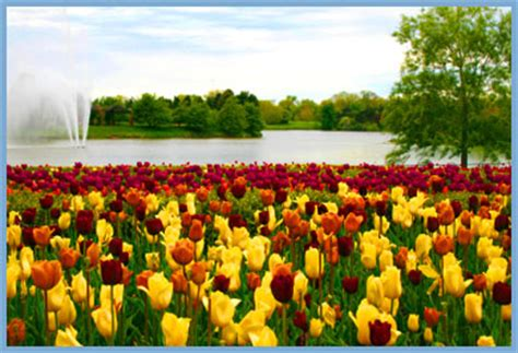 Chicago Botanic Garden Glencoe Il by Glencoe Il Information For Real Estate Buyers And Sellers