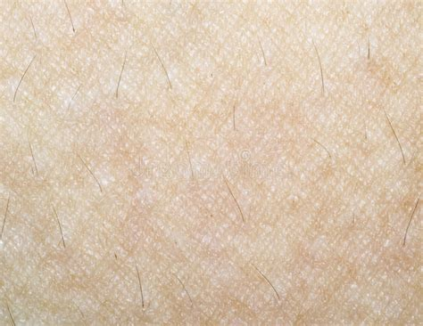 macro texture of human skin stock photo more pictures of abstract istock human skin texture stock image image of micro macro 26409147