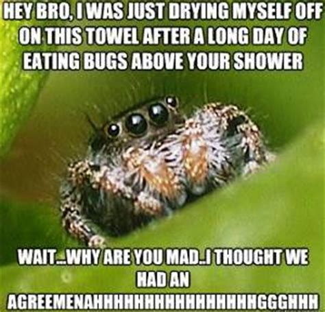 Sad Spider Meme - the sad world of the misunderstood house spider