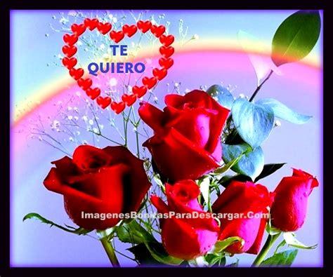 imagenes rosas mas bellas mundo imagenes de flores mas hermosas para regalar a mi novia