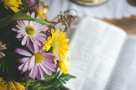 spring flowers   open bible photo lightstock