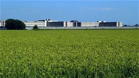 casa di reclusione di opera la colletta alimentare nel carcere di opera