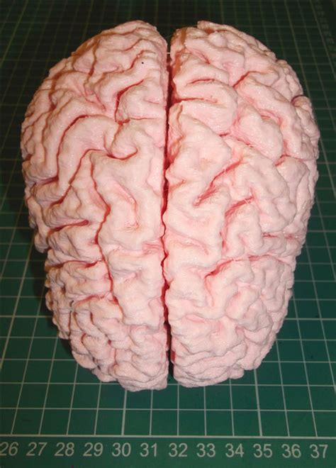 How To Make A Paper Mache Brain - how to make a paper mache brain 28 images paper mache