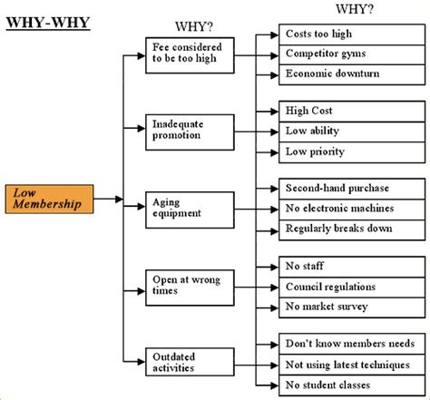 why why diagram team leadership services