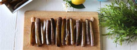 cucinare cannolicchi di mare come cucinare i cannolicchi misya info