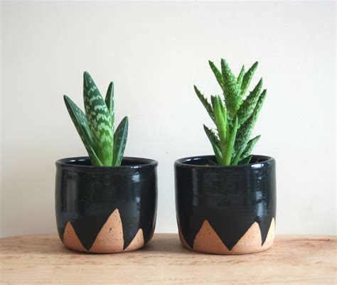 plants for small pots black mountain planters set of two small speckled planters black ceramic plant pot triangle