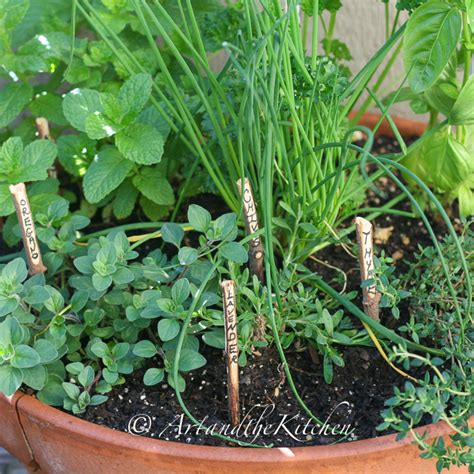 planting your own herb garden grow your own herb garden art and the kitchen