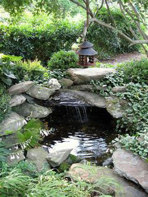 pond  cave pacific ponds  design pond construction