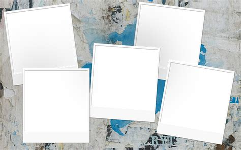 cornici per foto gratis cornice per foto immagini gratis su pixabay