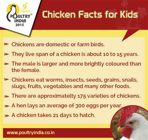 7 Facts For by 7 Chicken Facts For Poultry India 2015 This