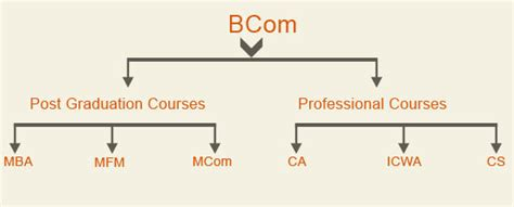 Benefit Of Mba After Bcom by Help Me Career Choice After B Graduation