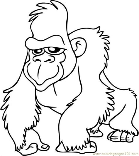 coloring pages gorilla7 animals gt gorilla free