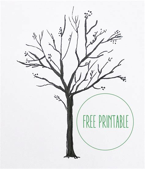 blank tree template 28 images sle blank family tree
