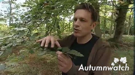 Why Do Trees Shed Their Leaves In Autumn by Learning Zone Class Abscission Why Do