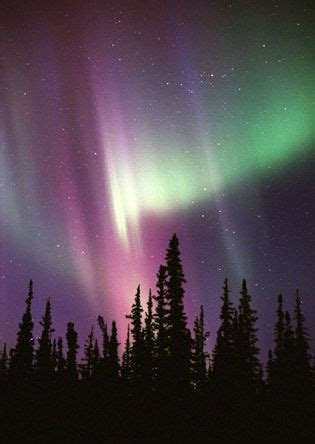 what are the northern lights called northern lights in alaska also called the borealis