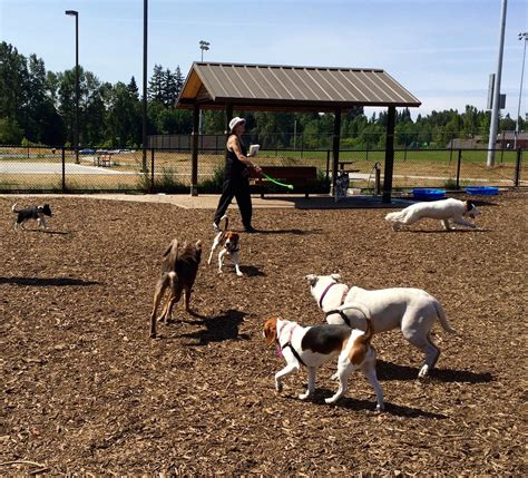 leash park image gallery leash park design