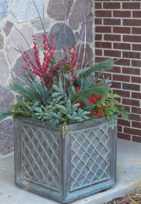growing a winter garden gallery stonewood design