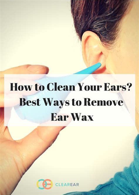17 best ideas about ear wax on goldendoodle