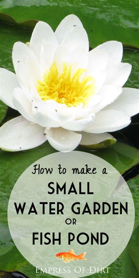 how to make a small water garden or fish pond gardens