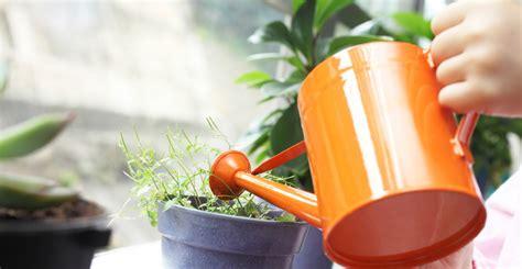 Faire Pousser Legumes Interieur by Comment Faire Pousser Des L 233 Gumes Et Des Fruits 13 Plantes