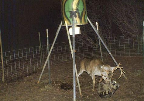 backyard deer feeder outdoor goods