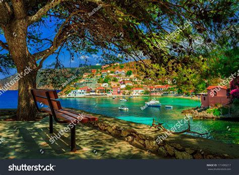bench under tree bench under tree on sunny day stock photo 171490217