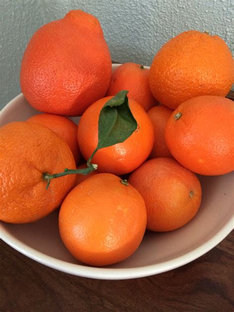 why eat oranges at new year preparing for new year multicultural kid blogs